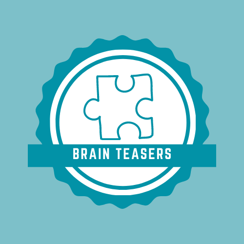 Website Brainteaser Logo 12.02.20 (002)